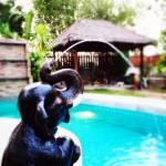 บ้านสุขโข หัวหิน สระว่ายน้ำส่วนตัว